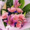Little pink lilies